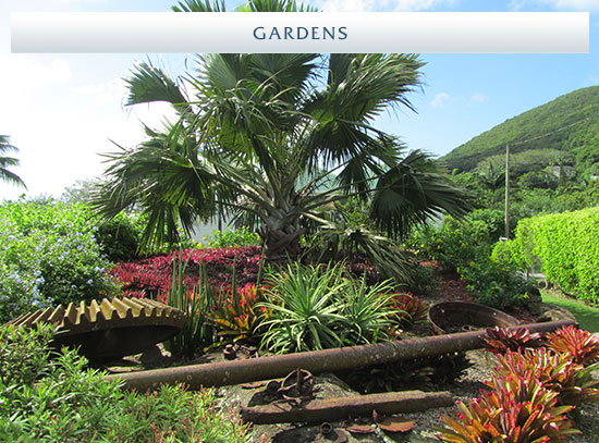 Sugar Mill Real Estate - Nevis, West Indies